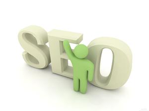 宽网服务是专业的seo服务商